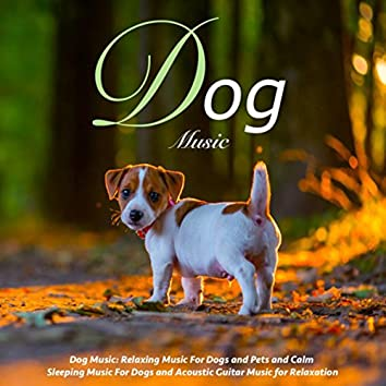 Dog Music: Relaxing Music for Dogs and Pets and Calm Sleeping Music for Dogs and Acoustic Guitar Music for Relaxation