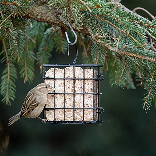 Stokes Select Suet Cage Bird Feeder, Single Suet Cake Capacity