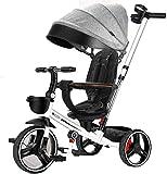 MJY Bicicleta Cochecitos de bebé estándar Rueda de PU Marco de acero de alto carbono, Triciclos para niños Manillar retráctil de 2 velocidades 7-4,Gris