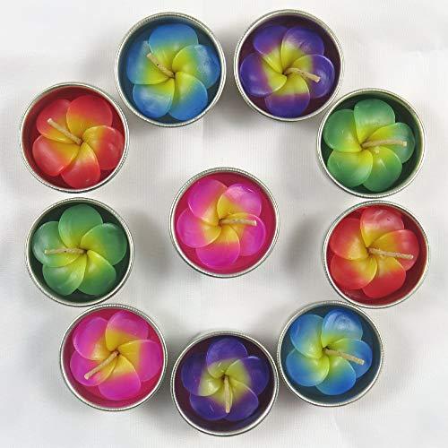 Bougies chauffe-plat et recharges pour porte-bougies comprenant 10 bougies parfumées en forme de fleurs de frangipanier