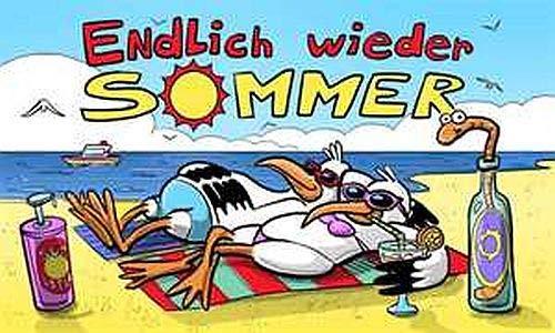 Fanshop Lünen Fahne - Flagge - Endlich Wieder Sommer - (Urlaub) - Schlange - Meer - Küste - Sonne - Möwen - Strand - 90x150 cm - Hissfahne mit Ösen -