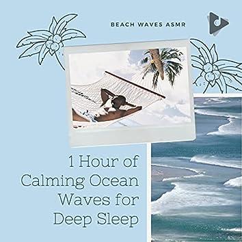 1 Hour of Calming Ocean Waves for Deep Sleep