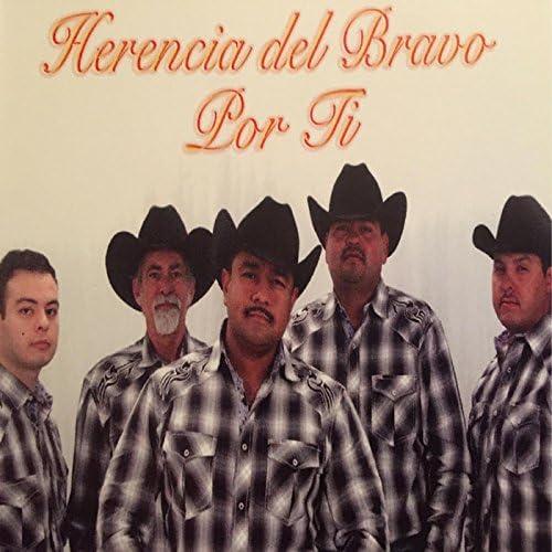 Herencia Del Bravo