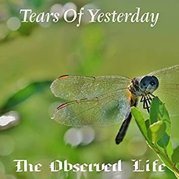 Tears of Yesterday