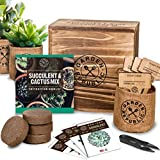 Cactus Succulent Seed Starter Kit - Indoor Garden Grow Kits, Seeds for Planting...