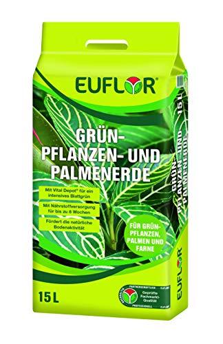 Euflor Grünpflanzen- und Palmenerde 15 L Beutel hochwertige Spezialerde für Grün- und Palmenpflanzen im Innenbereich, mit Vitalhumus und 8 Wochen Bedarfsversorgung