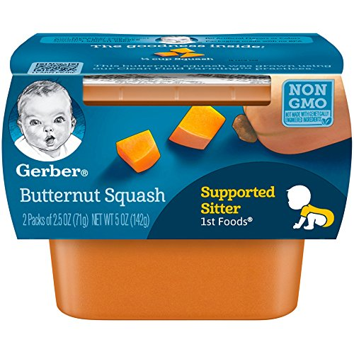 supported sitter baby food - 3