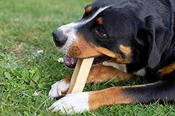 Wildfang® Bâton de fromage à pâte dure à mâcher pour chien I jouet pour chien os en fromage à mâcher-soin dentaire et entraînement des muscles mâchoire I bâton à mâcher durable & naturel