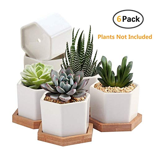 Succulent Plant Pots,OAMCEG 2.75 inch Mini Succulent Planter, Set of 6 White Ceramic Succulent Cactus Planter Pots with Bamboo Tray(Plants NOT Included)
