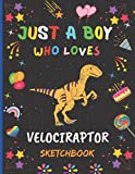 Just A Boy Who Loves Velociraptor Sketchbook: New Adorable Velociraptor Sketchbook Gifts For Boys .Velociraptor Blank Paper Sketch Pad For Creative ... and Doodling.Cute Christmas Gift Idea.v.2