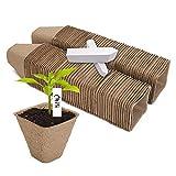 Dsaren 100 Pezzi Vasi Biodegradabili per Semina Vasi Fibra con Etichetta Della Pianta Vasi Torba Semina per Seme Pianta Fiori Verdure (100 pezzi)
