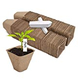 Dsaren 100 Piezas Macetas Biodegradables Planta Macetas Fibra Semillas con Etiqueta para Semilla Planta Flores Vegetale (100 Piezas)