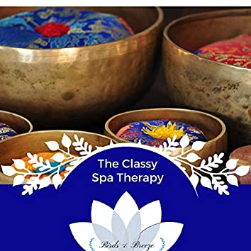The Classy Spa Therapy