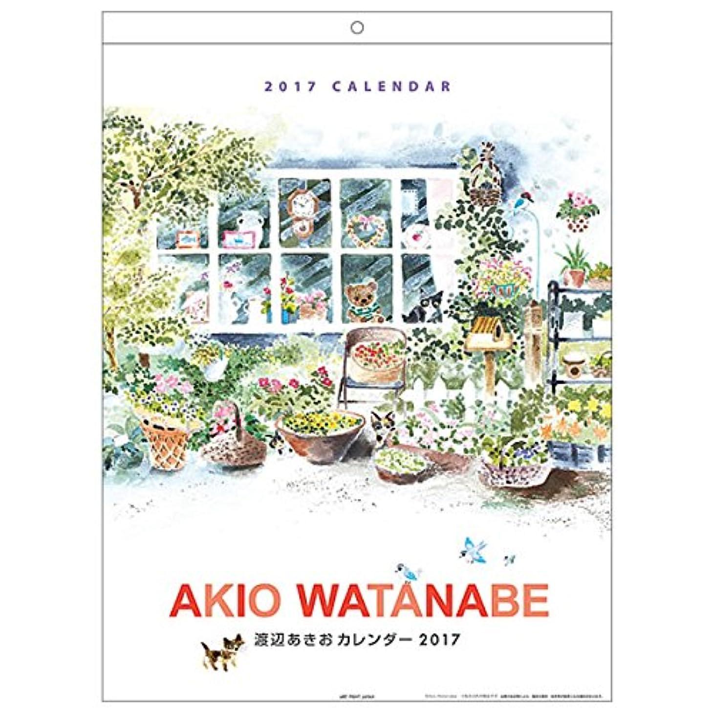 サイトラインスキーム盟主カレンダー 2017 壁掛け 渡辺 あきお 089 APJ