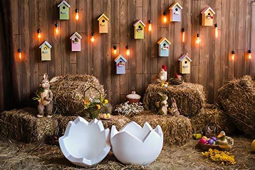 Fondos de Pascua para fotografía Flores de Primavera Huevos de Conejo Cubo Piso Gris Fondo de fotografía de Fiesta de bebé Estudio fotográfico A24 2,1x1,5 m
