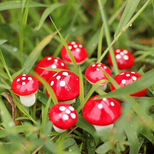 Mignon CH 50 Pcs DIY Jouet Maison Champignon Miniature Décoration pour Paysage bonsaï Plante Décoration de Jardin