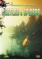Beetles & Spiders [DVD]