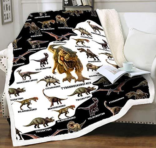 LIASOSO Dinosaur Fleece Blanket for Boy Kids Adult Plush Sherpa Velvet Reversible Throw Blanket for Couch Sofa Sectional Bedroom Travel 3D Print Jurassic Park Dino Wool Blanket 50 x 60 Black and White