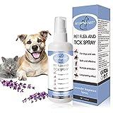 SEGMINISMART Antipulci Gatti, Spray Antipulci, Spray Antipulci per Cani, Antipulci Spray Cani e Gatti, Flea Spray, Spray per la Protezione delle pulci, Cani Gatti Pulci Zecche