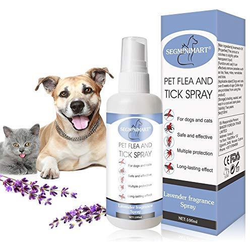 SEGMINISMART Flea Spray, Pulgas Spray, Anti Pulgas, Spray de protección contra pulgas, Spray Repelente de pulgas de Ingredientes Naturales para Perros Pulgas Garrapatas
