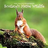 Draw Your Own Encyclopaedia Scotland's Native Wildlife (Volume 10)