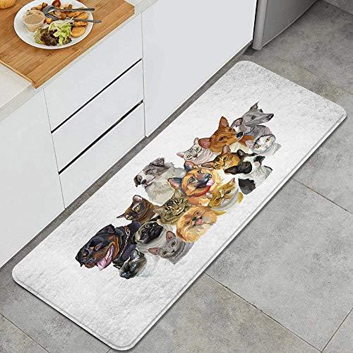 ZORMIEY Alfombras Cocina Antideslizante Alfombra de Baño Alfombrillas Cocina,Retrato de un Amante de Las Mascotas Grupo de Mascotas Vibrantes y sombreadas Gatos y Perros Pastor Australiano,45x120 cm