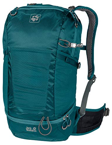 Jack Wolfskin Kingston 22 Pack Hiking Pack, Dark Spruce, ONE Size