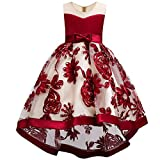 WEONEDREAM Flower Dresses for Teenage Girls Birthday Party Casual Holiday Prom Princess Ball Gowns Size of Age of 8-9 Years Old Teen Fashion Beauty (Red 140)
