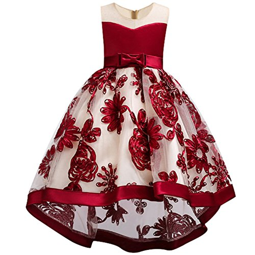 WEONEDREAM Pageant Flower Princess Girls Dresses for Parties Weddings Communications Prom Birthday Gifts Casual Occasion Bowknot Satin Sequin Tea Long Dresses for 5T 6T Girls (Red 120)