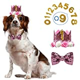 Dog Birthday Girl-Crown Dog Birthday Hat-with 0-9 Figures Charms Grooming Accessories Pack of 1-Pink Adjustable Bow-Great Dog Birthday Outfit and Decoration Set.
