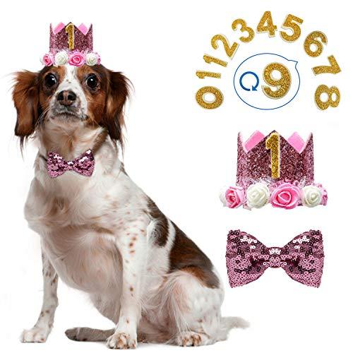 KEVIN-KW Dog Birthday Boy Bandana