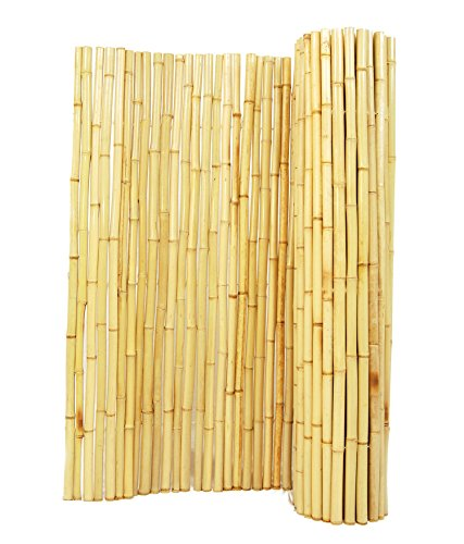 Forever Bamboo Natural Rolled Bamboo Fence 1in D x 4ft H x 8ft L