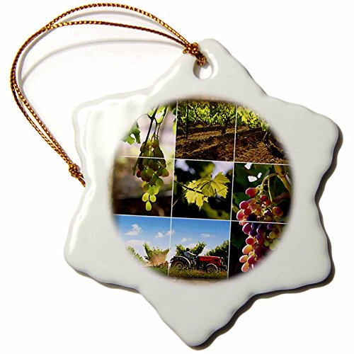 3dRose orn_36514_1 Napa Valley Collage Snowflake Decorative Hanging Ornament, Porcelain, 3-Inch