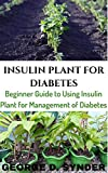 INSULIN PLANT FOR DIABETES: Beginner Guide to Using Insulin Plant for Management of Diabetes (English Edition)