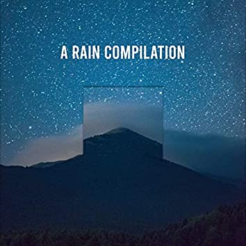 2018 A Rain Compilation: Gentle Rain, Heavy Rain, Wind, Thunder, Lightning