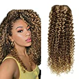 Hetto Hair Extensions Clip in Remy Human Hair Brown Highlight Blonde kinky Curly Clip in Hair Extensions 20 Inch 100g Thick Clip in Extensions Human Hair