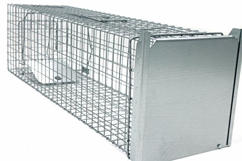 Holtaz Super Fort Cage Piège De Capture pour: Martres, Chats, Chiens, Loutres, Castors, Renards, Ratons Laveurs, Dimensions: 120x34x34 cm, avec Appât pour Piégeage
