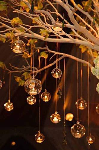 Ecosides Set mit 50 Glaskugeln zum Aufhängen, 80 mm, Glas-Teelicht-Terrarium, hängende Glaskugeln, Kugel-Terrarium, Teelichthalter, Hochzeitsdekoration für drinnen und draußen (transparent, 50)