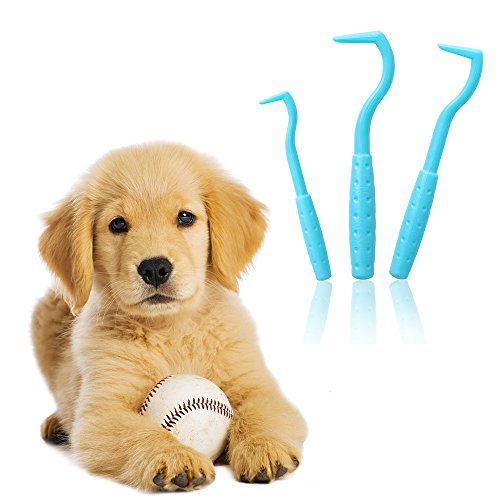 Zeckenhaken Zeckenzange | Verschiedene Haken für alle Zecken-Größen | Schonende Zeckenentfernung in Sekunden | GRATIS E-Book: Coole Tricks für clevere Dogs | Blau (3-Set)