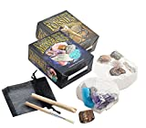 Set of 2 Dig Your Own Fossil & Mineral Kits - Small by Fossil Gift Shop -