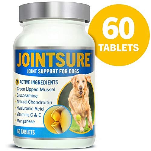 JOINTSURE – Integratore per Le articolazioni del Cane | 60 compresse | con cozza Verde, glucosamina e condroitina Naturale per la Cura delle articolazioni del Cane.
