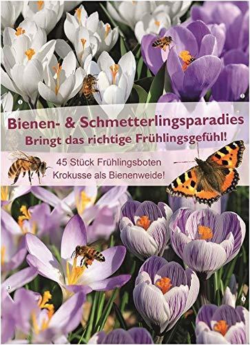 mgc24 Bienen- & Schmetterlingsparadies Krokusse Bienenweide, bunte Blumenzwiebelmischung aus farbenfrohen Frühjahrsblüher, 45 Stück