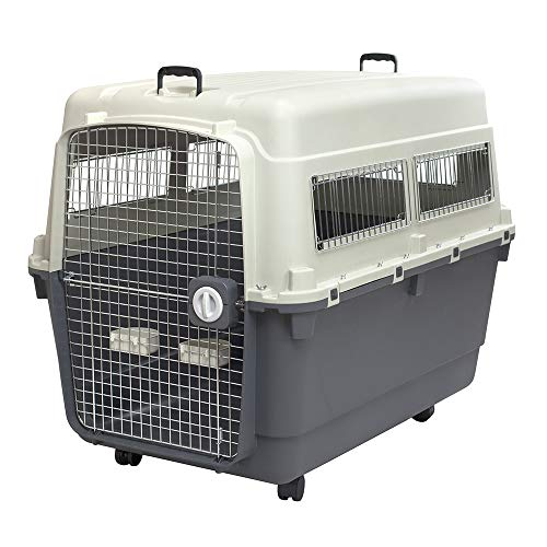 SportPet Designs Plastic Kennels Rolling Plastic Airline Approved Wire Door Travel Dog Crate, XXX-Large
