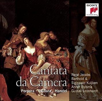 Italian Solo Cantatas