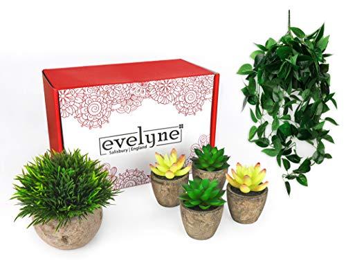 Evelyne - Juego de 5 plantas artificiales colgantes y pequeñas plantas artificiales en macetas, accesorios para plantas de baño o decoración del hogar