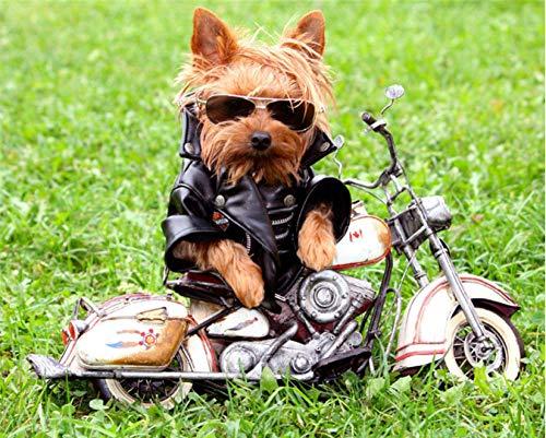 LIWEIXKY Rompecabezas de 1000 Piezas para Adultos Juego de descompresión de Madera Grande Dificultad Divertido-Perro con Gafas de Sol