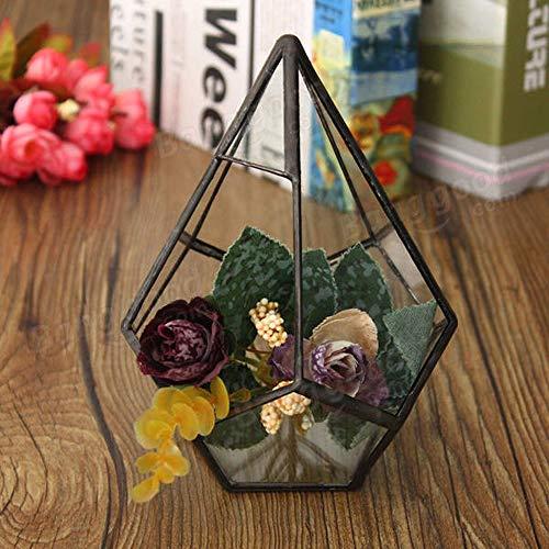 HO-TBO Terrarium pour plantes succulentes, serre triangulaire en verre pour micro paysage, serre de jardinage (couleur : transparent, taille : unique)