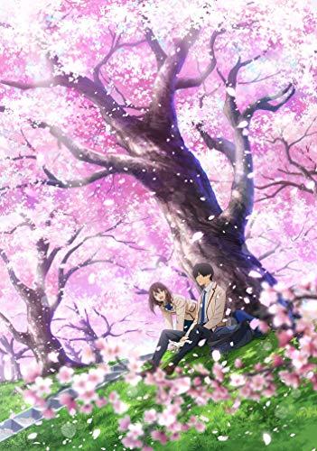 劇場アニメ「君の膵臓をたべたい」(完全生産限定版) [Blu-ray]