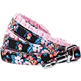 """Blueberry Pet 5 Patterns Durable Spring Made Well Elegant Floral Print Dog Leash with Lace in Sleek Black, 5 ft x 5/8"""", Small, Leashes for Dogs"""