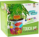 Touch-Me-Not Kids Gardening Set - Arts & Crafts for Kids Ages 4+ Kids Arts and Crafts Activities, Painting Craft Kits DIY Garden Kit for Boys & Girls Age 4 5 6 7 8-12 Years Old - Kid Toys & Gifts